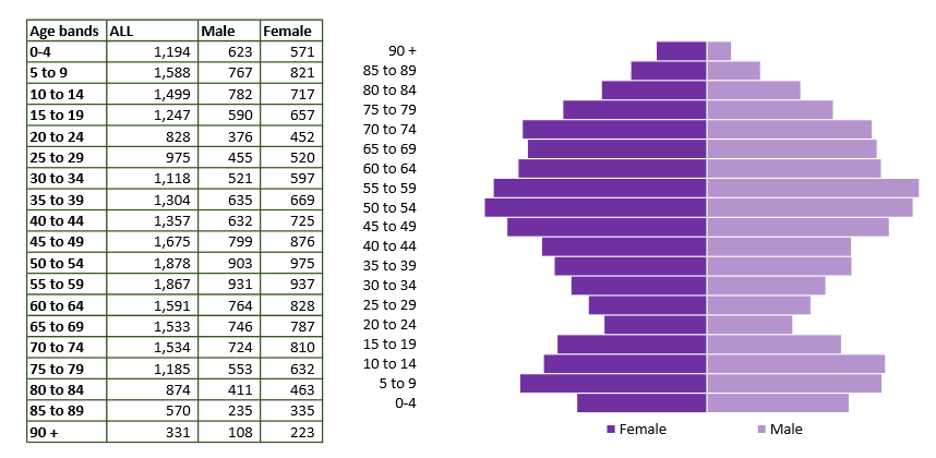 Southern wilts population pyramid