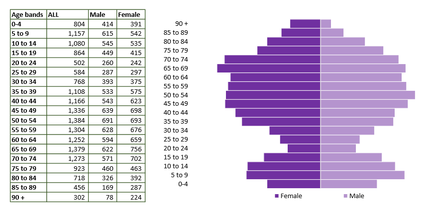 Bradford on Avon population pyramid