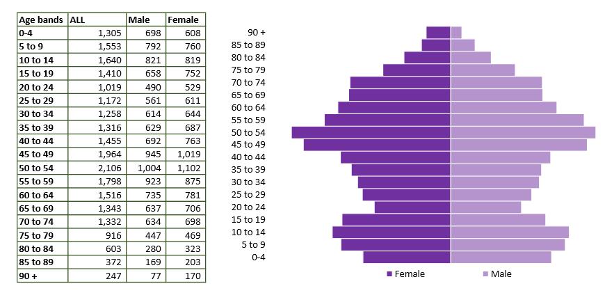 Calne population pyramid