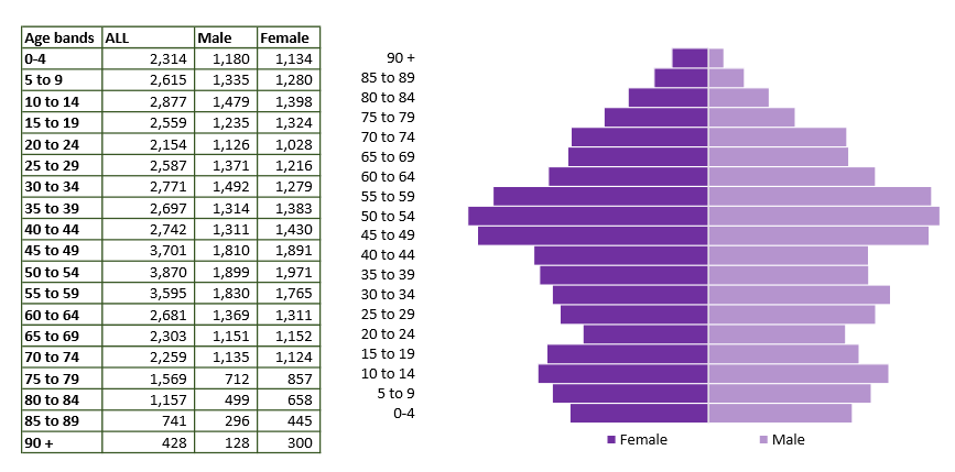 Chippenham population pyramid