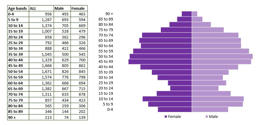 Malmesbury population pyramid