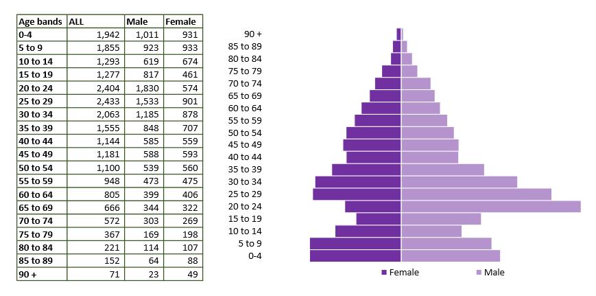 Tidworth population pyramid