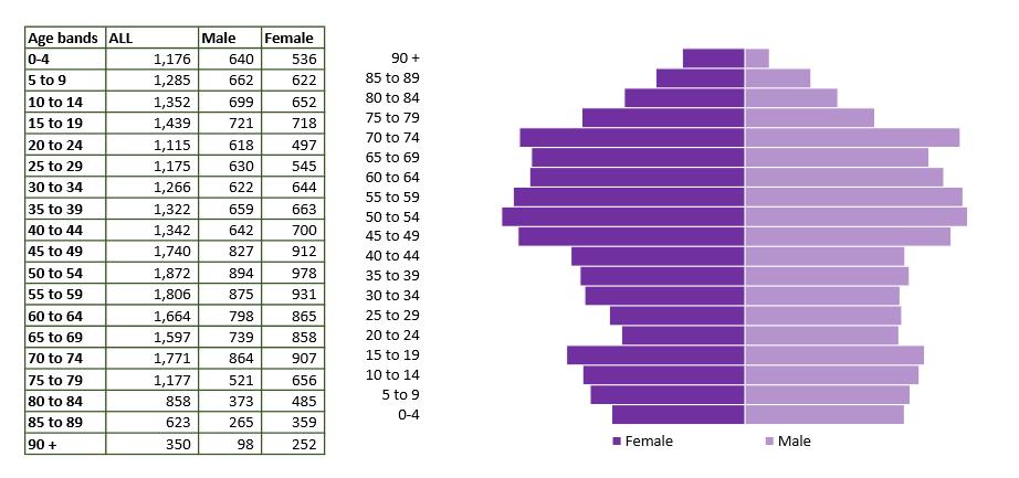 Warminster population pyramid