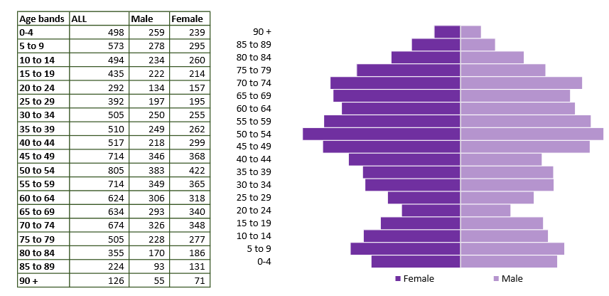 Wilton population pyramid