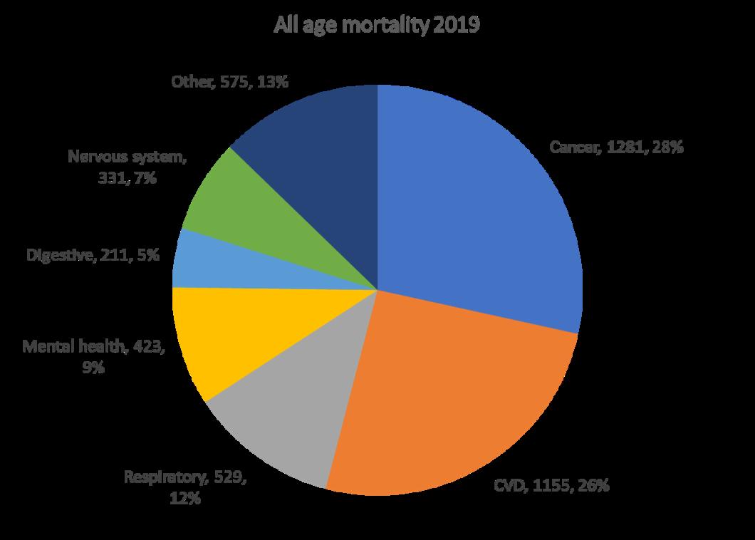 mortality pie chart