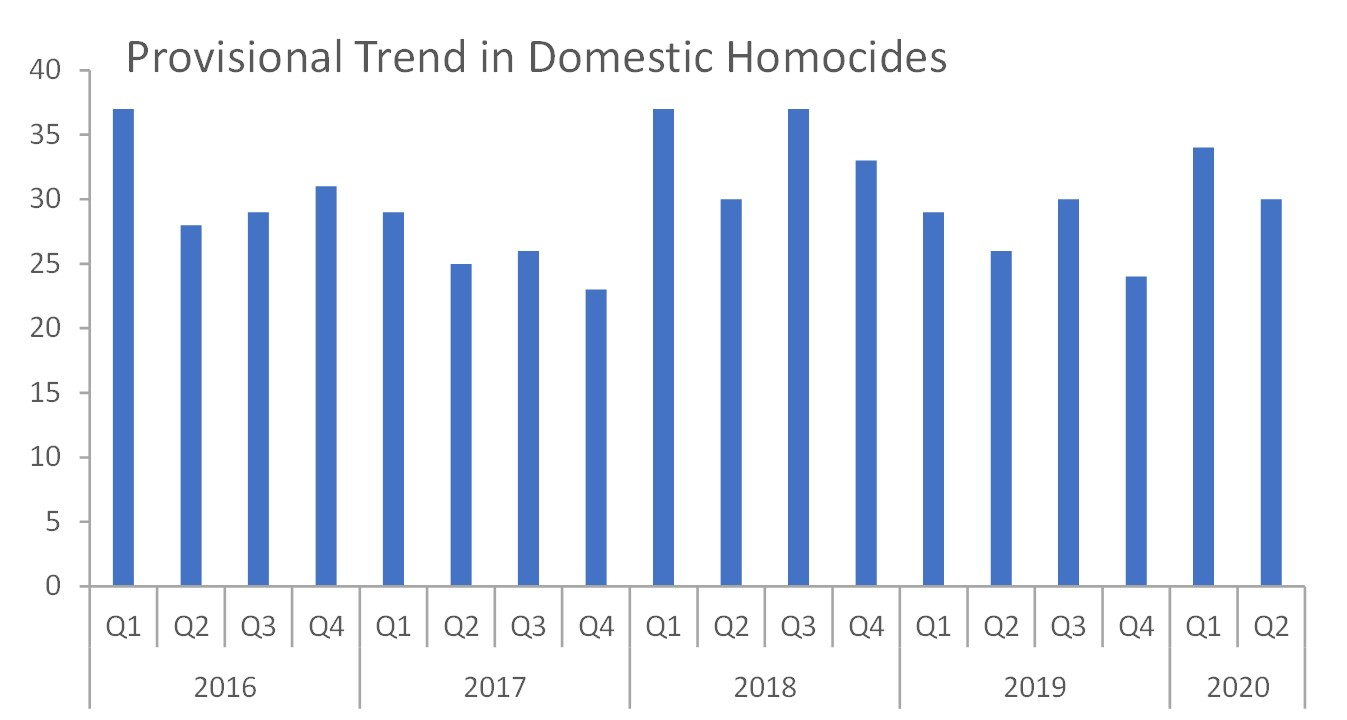 provisional trend in domestic homicides