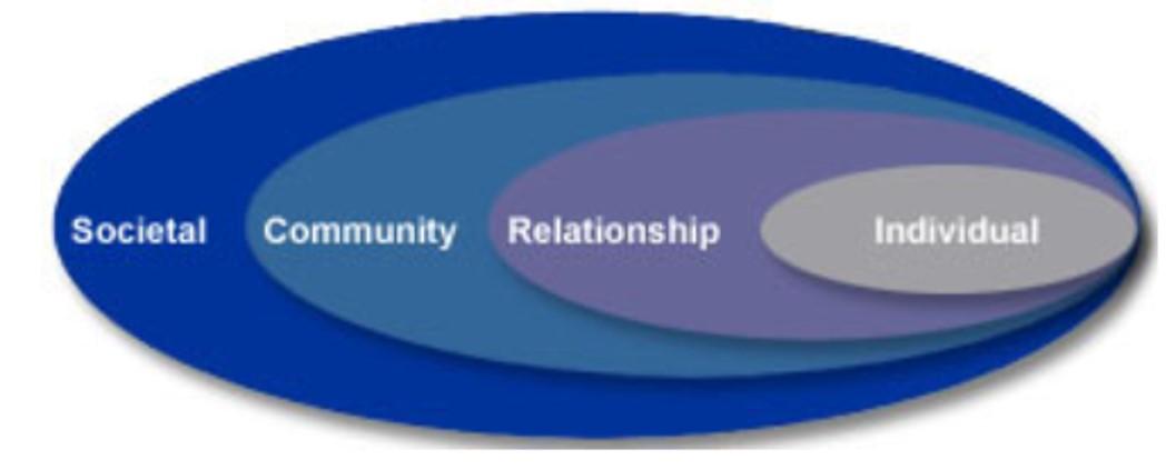 socioeconomic diagram